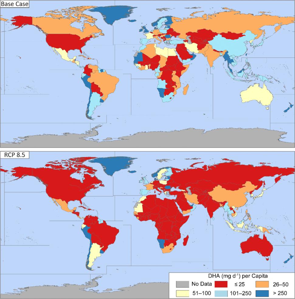 현재(위 그림)와 '저감 정책을 쓰지 않고 지금처럼 온실가스를 배출할 경우'(대표농도경로 RCP 8.5) 2100년의 1인당 하루 디에이치에이 섭취량(단위 ㎎)의 세계 분포. '엠바이오'(MBIO) 제공