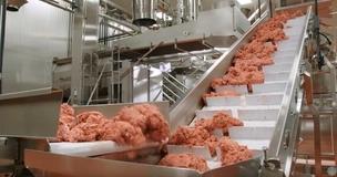 대체육 '유니콘'의 탄생…2020년 세포농장 고기가 온다
