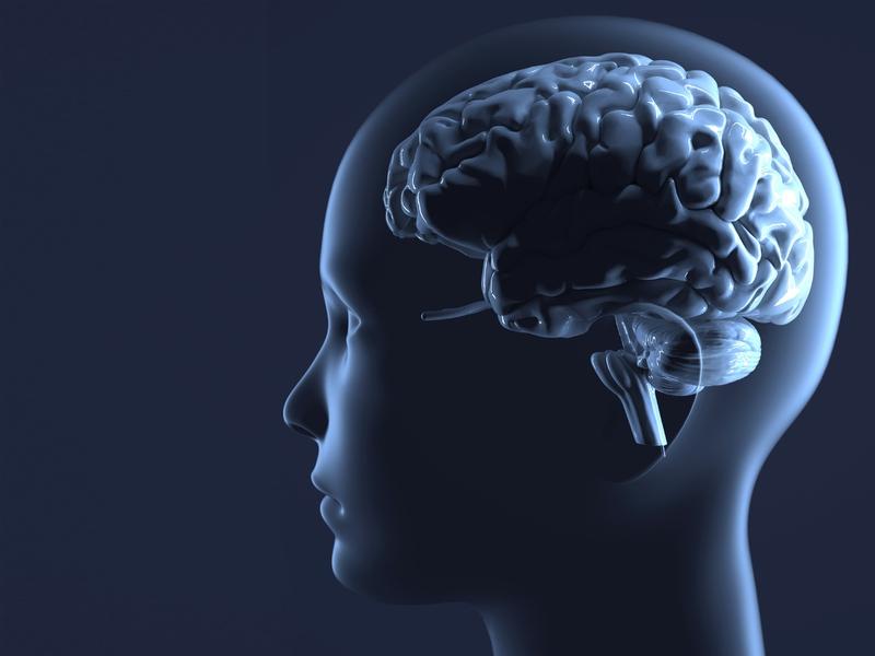 자폐, 파킨슨병, 조현병 같은 뇌질환들이 뇌에서 멀리 떨어진 대장 안의 미생물 생태계와 연관성을 지니고 있다는 연구결과들이 최근 10년 새 잇따르고 있다. 장내 미생물 생태계를 조절하면 뇌질환 치료에 도움이 될 수 있다는 기대도 생겨나고 있다. 게티이미지뱅크